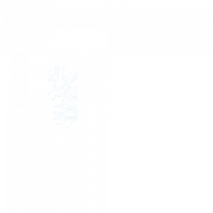 NTS FRANCE-LOGO-CLAIR